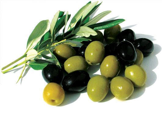 Vinegar And Olive Oil News